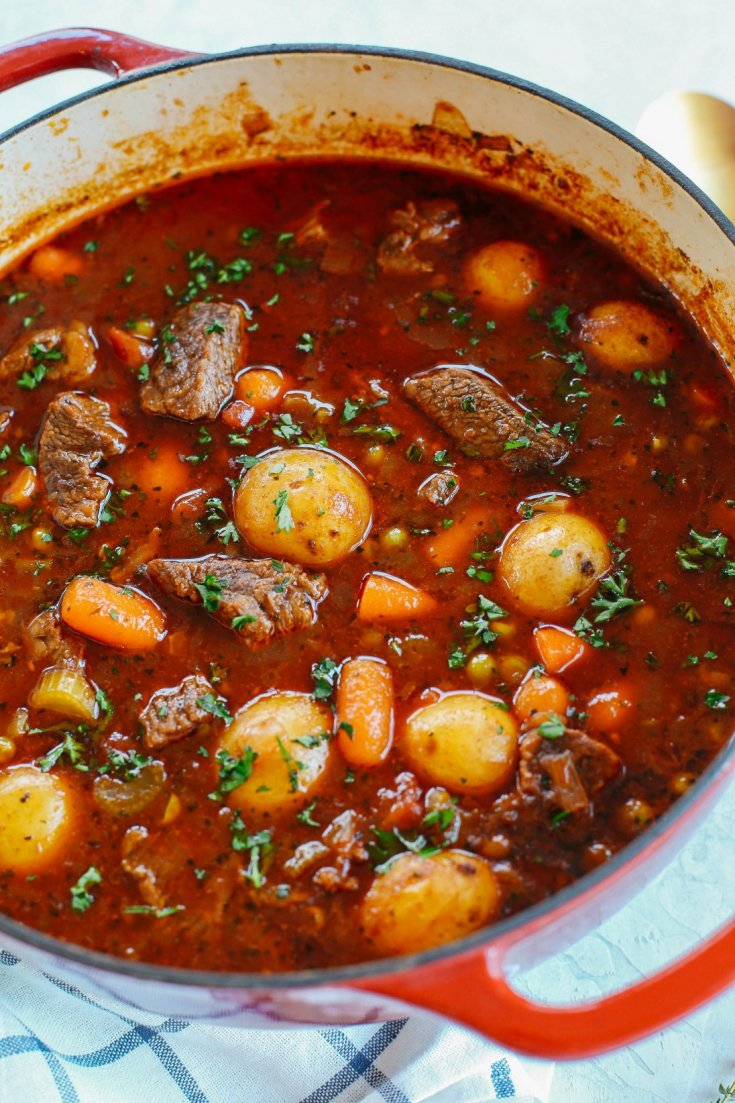 Instant Pot Beef and Tomato Stew
